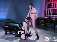 Precious slender boyfriends are tying leather belts and fucking hard